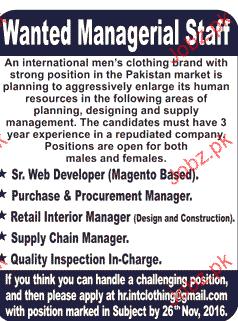 Web Developers, Procurement Manager Job Opportunity