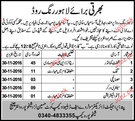 Shift Commanders, Cook, Masalchis Job Opportunity