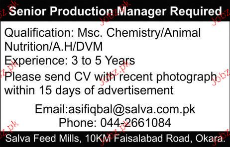 Senior Production Manager Job Opportunity