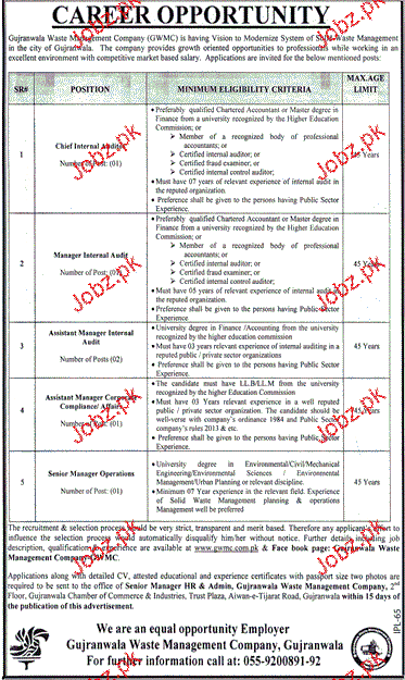 Chief Internal Auditors, Manager Internal Audit Wanted