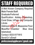 Male / Female Staff Job Opportunity