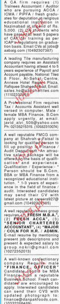 Accountant and Account Assistants Job Opportunity