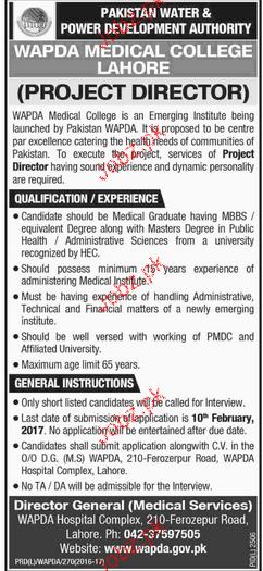 Project Director Job in WAPDA Medical College