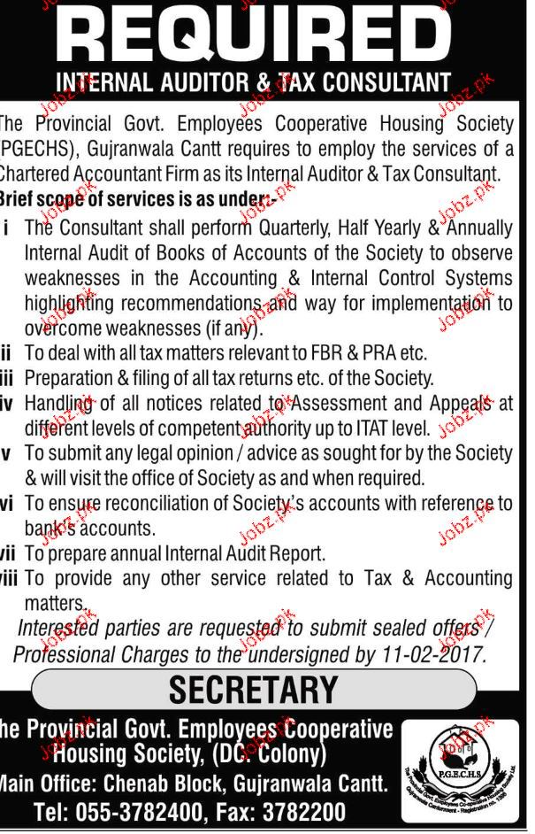 Chartered Accountant Job Opportunity