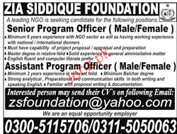 Senior Program Officers and Assistant Job Opportunity