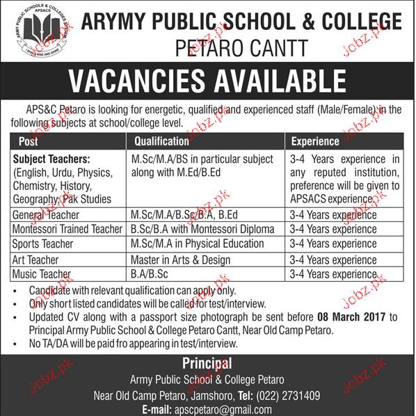 Subject Teachers, General Teachers Job in Army Public School