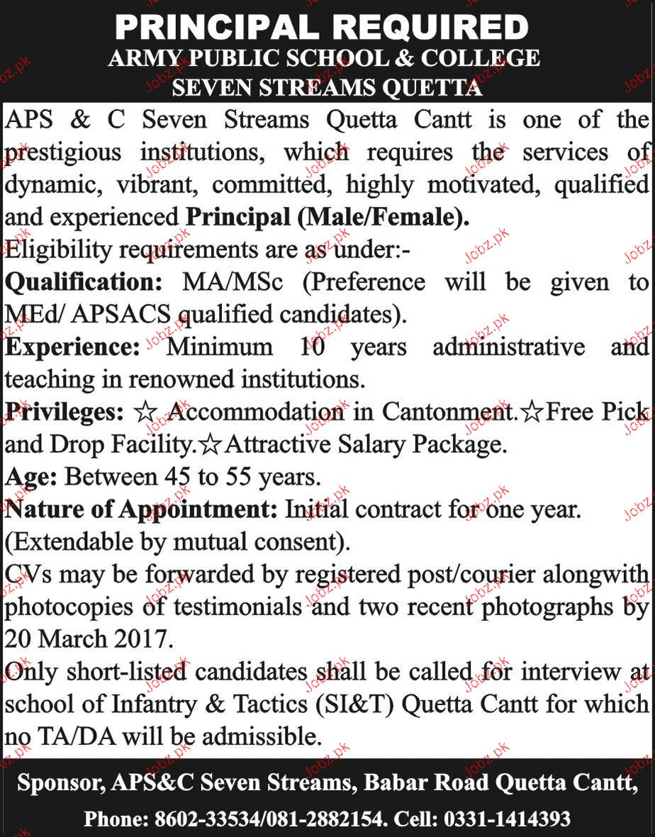 Principal Job in Army Public School and College