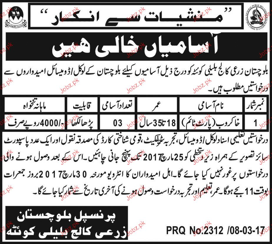 Sweepers Job Balochistan Agriculture College