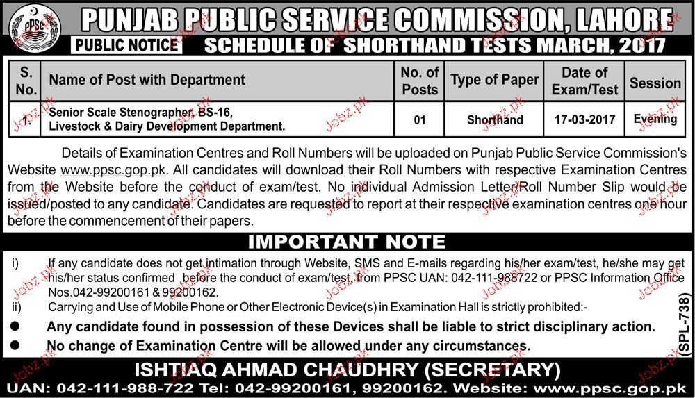 Senior Scale Stenographers Job in Punjab Public Service