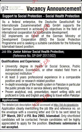 Junior Advisers Job Opportunity