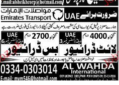 Light Drivers and Bus Drivers Job Opportunity