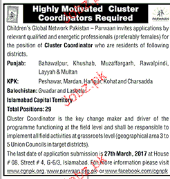 Cluster Coordinators Job Opportunity