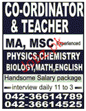 Coordinators and Teachers Job Opportunity