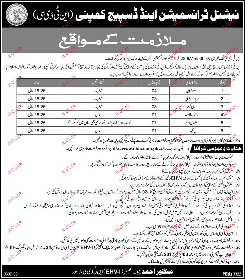 Store Helpers, Survey Helpers, Naib Qasid Job Opportunity