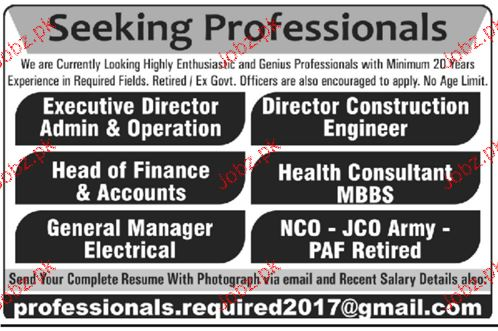 Executive Director, Head of Finance, Accountant Wanted