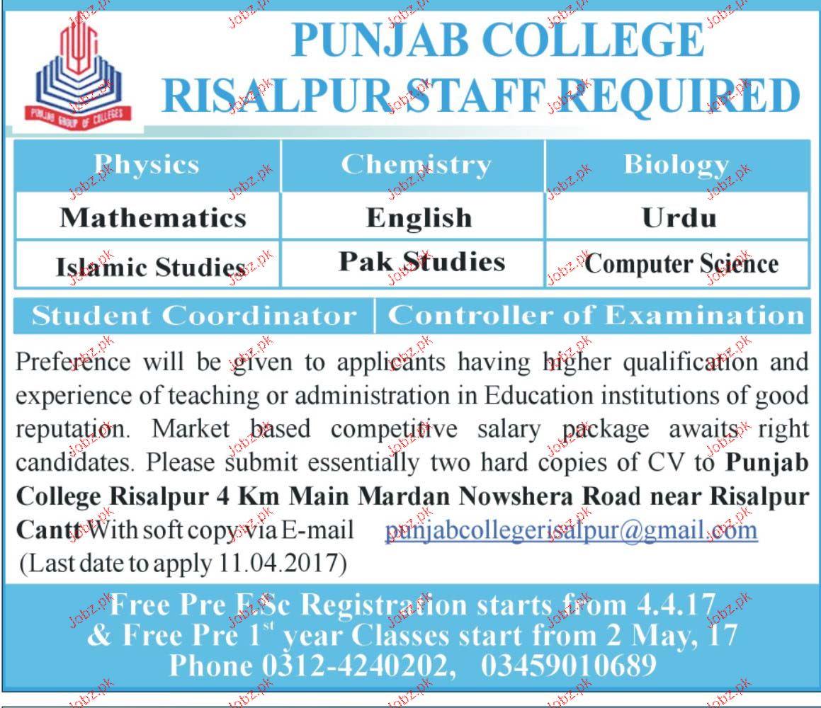 Teachers Job in Punjab College
