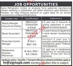 Deputy Manager, Senior Accountant Job Opportunity