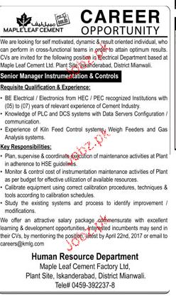 Senior Manager Instrumentation Job Opportunity