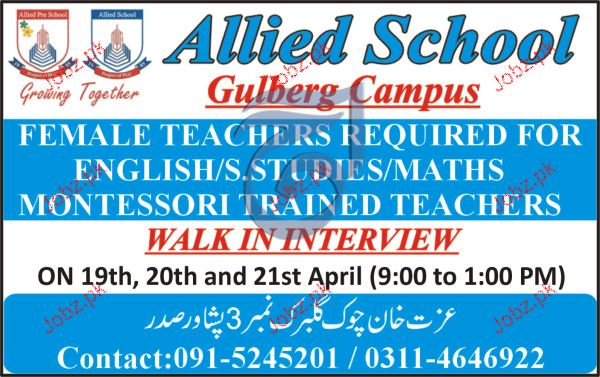 Female Teachers Job in Allied School