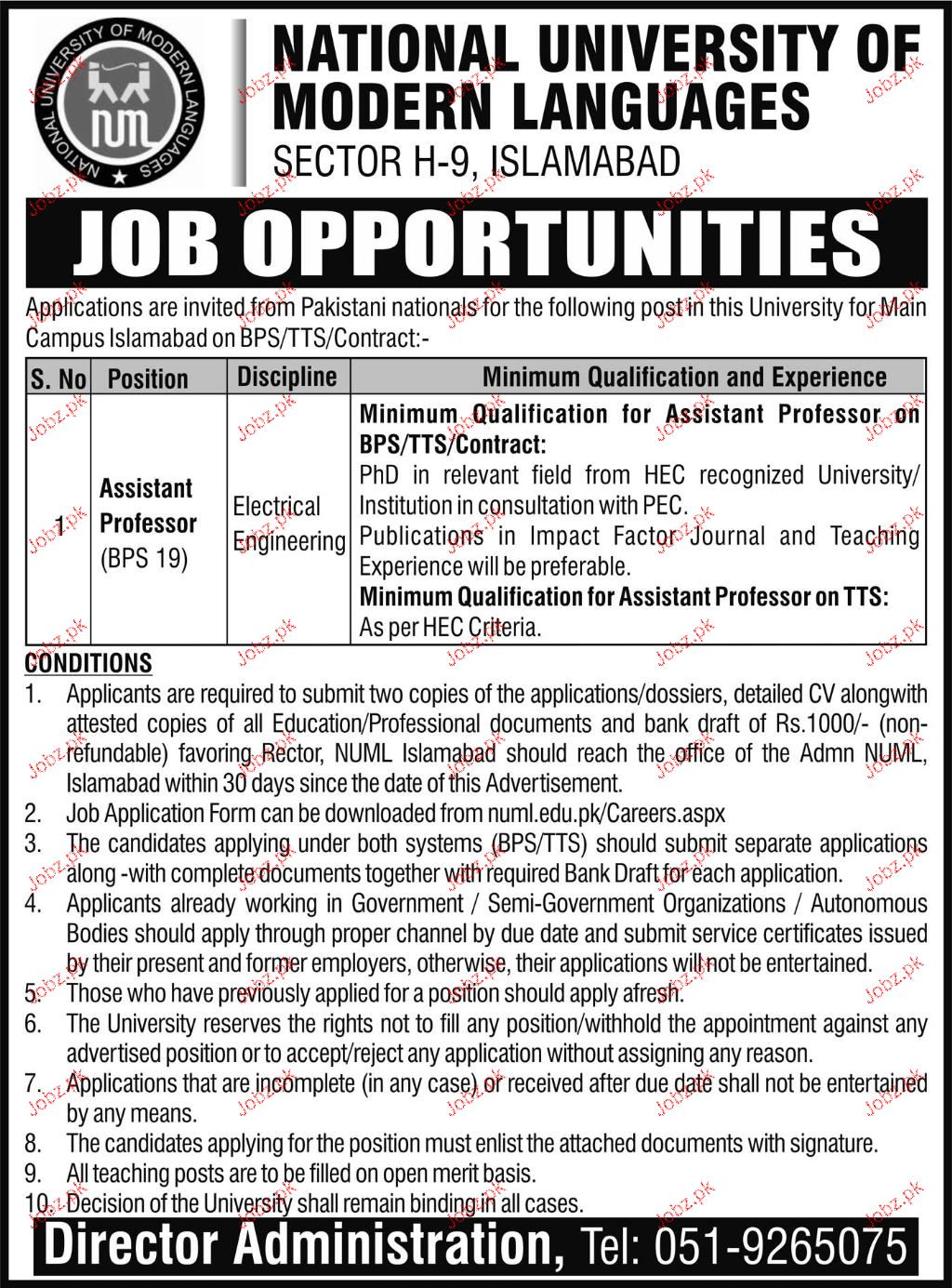 Assistant Professors Job in NUML