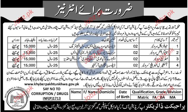 Geophysical Surveyors, Graphic Surveyors Job Opportunity