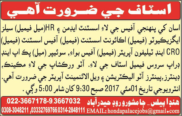 Assistant Admin, Sales Executive and Office Assistant Wanted