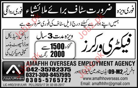Factory Workers required