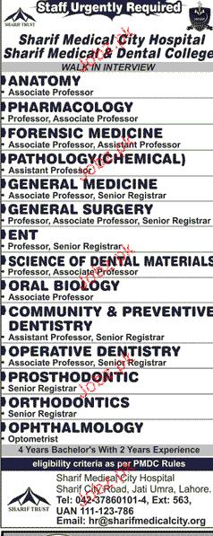 Associate Professors Anatomy Professors Job Opportunity 2018 Jobs