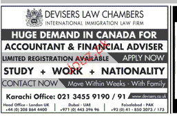 Accountant and Financial Advisers Job Opportunity