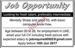Male / Female Staff Job Opportunity