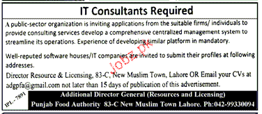 IT Consultants Job Opportunity
