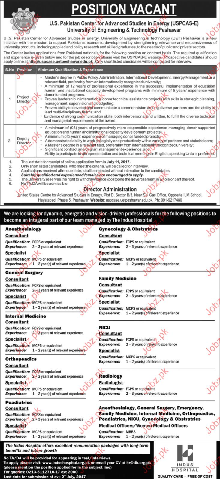 University Of Science & Technology Project Director Jobs