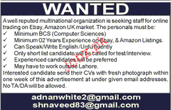 Online Working Staff Job Opportunity