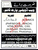 Web Developers Job Opportunity