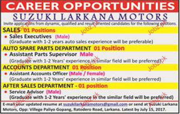 Assistant Account Officers,Sales Executives  Job Opportunity