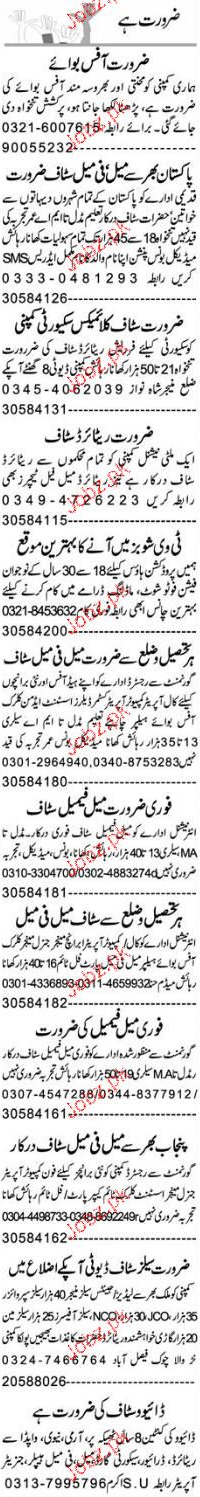 Assistants, Security Guards Job Opportunity
