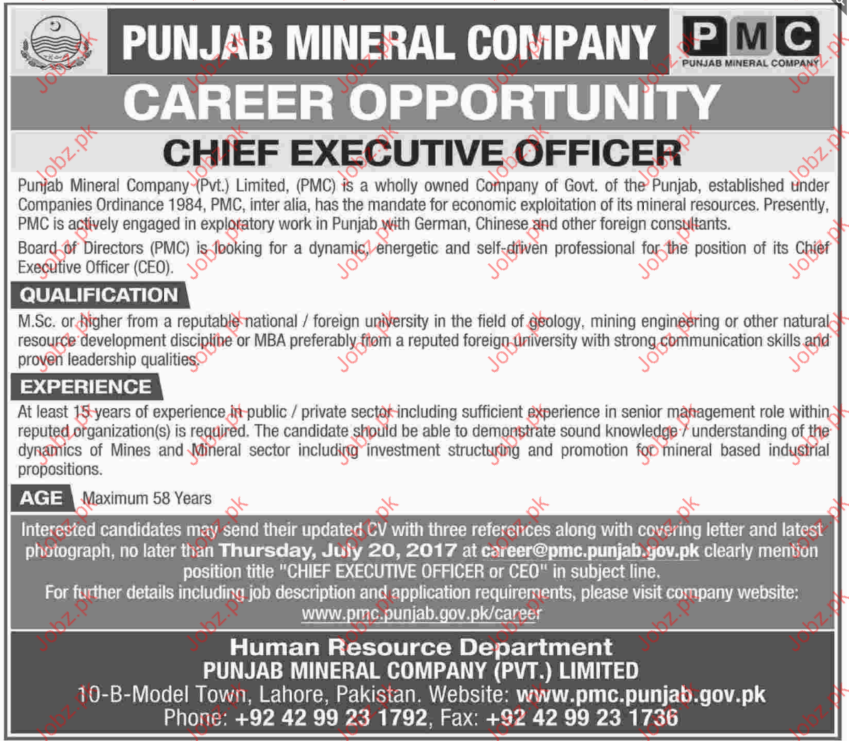 Perfect Chief Executive Officer Jobs In Punjab Mineral Company