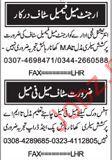Field Work Staff Required