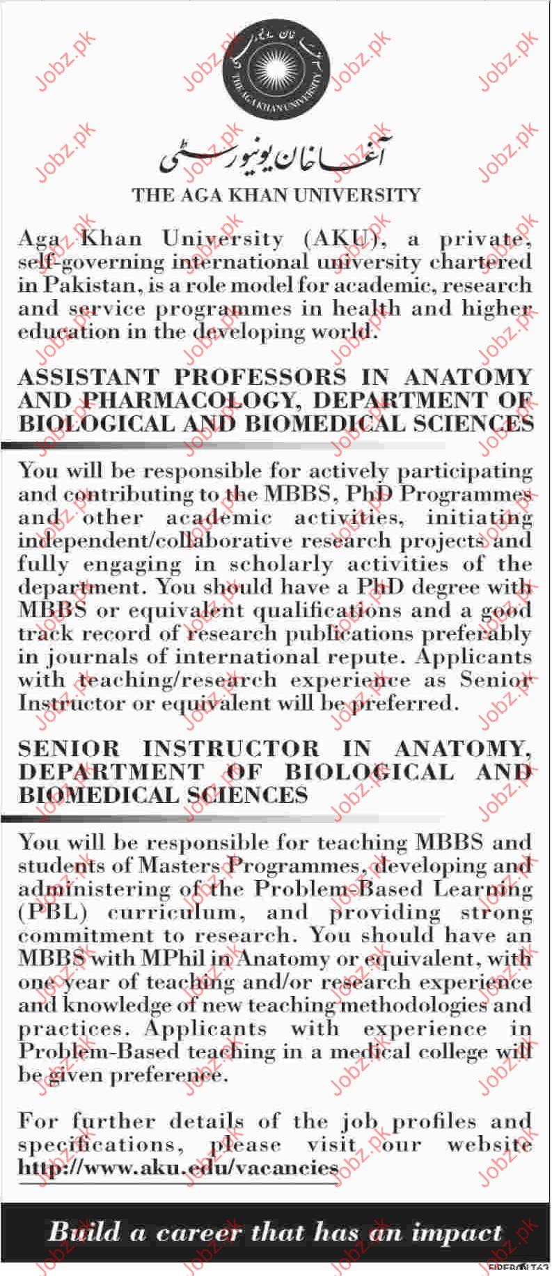 Assistant Professor Jobs in Agha Khan University