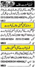 Male And Female Excellent Job Opportunities
