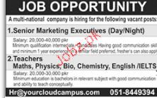 Senior Marketing Executives Job Opportunity