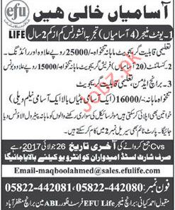 Unit Manager Required For efu Life Insurance