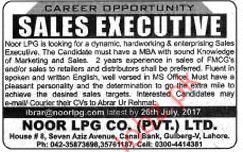 Noor LPG Required Sales Executive 2019 Job Advertisement