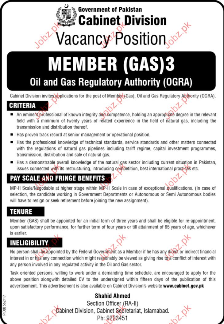 Member Oil & Gas Requlatory Jobs In Cabient Division