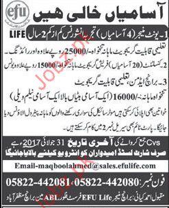 EFU Life Insurance Company Jobs
