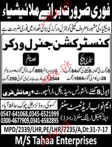 General  Workers Construction Job Opportunity
