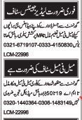 Male And Female Staff Required