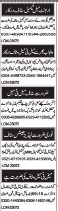 Males and Female Staff Required for Field Work