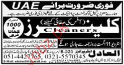 Cleaners Wanited By UAE Office