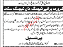Government College Model Town Jobs